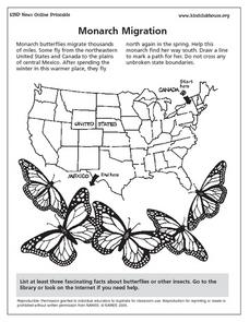 Monarch Migration Lesson Plan