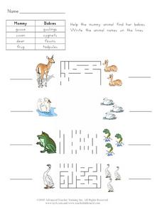 Mother and Baby Animals 3 Worksheet