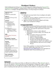 Mouthpart Madness Lesson Plan