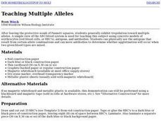 Multiple Alleles Lesson Plan