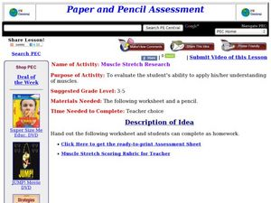 Muscle Stretch Research Lesson Plan