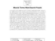 Muscle Terms Word Search Puzzle Worksheet