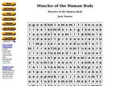 Muscles of the Human Body Worksheet