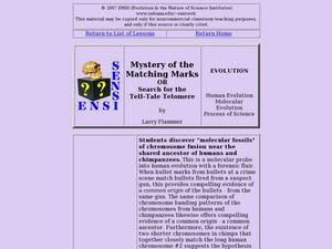 Mystery of the Matching Marks Lesson Plan
