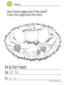 N is for Nest Lesson Plan