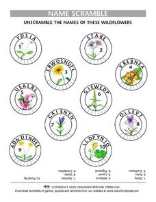 Name Scramble:  Wildflowers Lesson Plan
