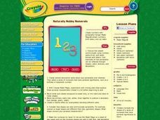 Naturally Nubby Numerals Lesson Plan