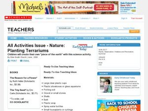 Nature: Planting Terrariums Lesson Plan