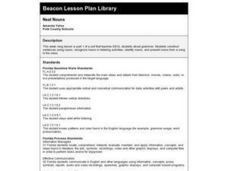 Neat Nouns Lesson Plan
