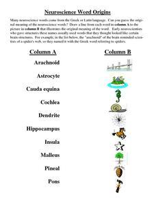 Neuroscience Word Origins 9th - Higher Ed Worksheet | Lesson Planet