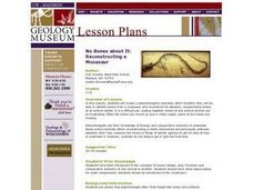 No bones About It -A Mosasaur Lesson Plan