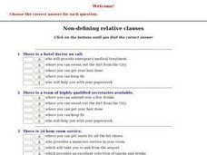 Non-Defining Relative Clauses Worksheet