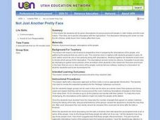 Not Just Another Pretty Face Lesson Plan