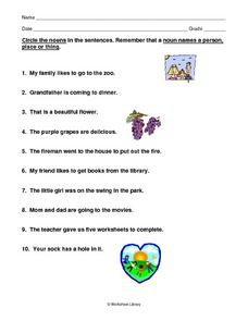 Nouns Name a Person, Place or Thing Worksheet