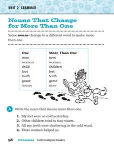 Nouns That Change for More Than One Worksheet