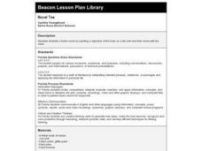 Novel Tee Lesson Plan