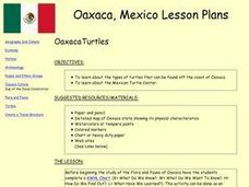 OaxacaTurtles Lesson Plan