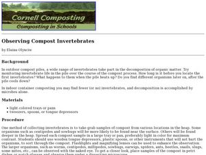 Observing Compost Invertebrates Lesson Plan