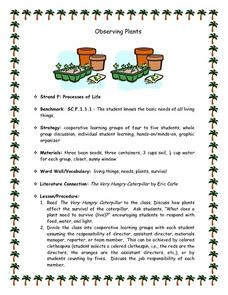 Observing Plants Lesson Plan