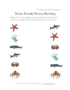 Ocean Animals Picture Matching Worksheet