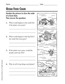 Worksheets Free Food Chain Worksheets ocean food chain 2nd 4th grade worksheet lesson planet worksheet