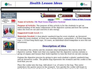 Oh That Gross Digestive System! Lesson Plan