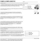 Oompah Loompa Genetics Worksheet