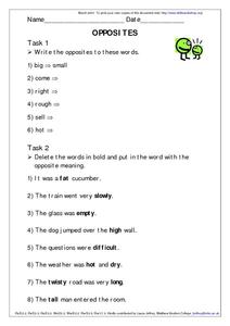 Opposites and Antonyms Worksheet