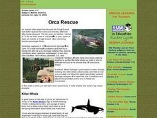 Orca Rescue Lesson Plan