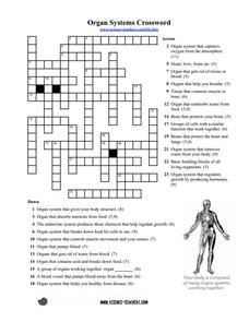 Printables Organ Systems Worksheet organ systems crossword puzzle 5th 8th grade worksheet lesson worksheet