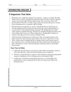 Organisms that Glow Worksheet