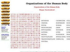 Organizations of the Human Body Worksheet