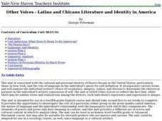 Other Voices - Latino and Chicano Literature and Identity in America Lesson Plan