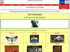 Our Australia: The Plants and Animals of Australia Worksheet