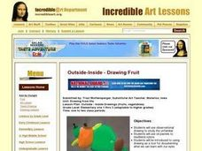 Outside - Inside Drawings Lesson Plan