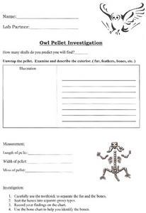 Printables Owl Pellet Dissection Worksheet owl pellet dissection worksheet davezan investigation 4th 7th grade lesson planet