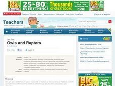 Owls and Raptors Lesson Plan
