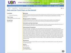 Owls and the Food Chain on the Internet Lesson Plan