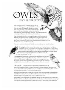 Owls in Our Forests Lesson Plan