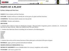 Parts of a Plant Lesson Plan