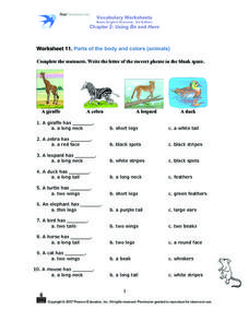 Parts of the Body and Colors (Animals) Worksheet