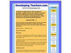 Past Simple Questions and Short Answer Forms Lesson Plan
