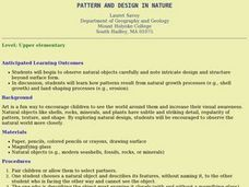 Pattern And Design in Nature Lesson Plan