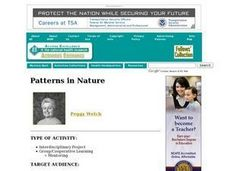 Patterns in Nature Lesson Plan