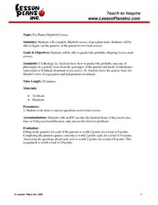 Pea Plants Dihybrid Cross 8th - 10th Grade Worksheet ...