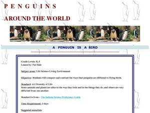 Penguins Around the World Lesson Plan