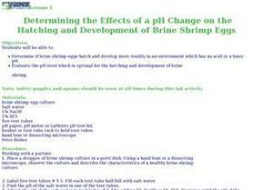 pH Change and Brine Shrimp eggs Lesson Plan