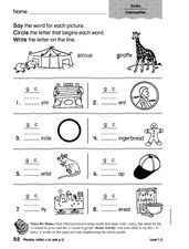 Phonics: Initial c, s, and g Worksheet
