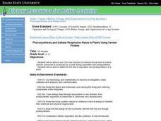 Photosynthesis and Cellular Respiration Rates in Plants Using Vernier Probes Lesson Plan