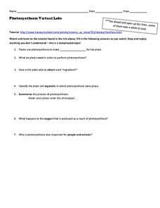 essay questions for bronx masquerade Bronx mascuarade book report essay by labtec, junior high, 7th grade, a  bronx masquerade's setting varies from place to place there are three main settings.